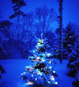 ЕлкаРождество